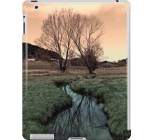 A stream, dry grass, reflections and trees II | waterscape photography iPad Case/Skin