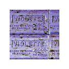 Violette by lisa1970