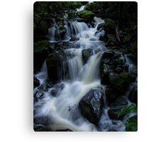 Rushing waterfall - Milford Sound Canvas Print
