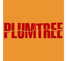 Plumtree Photographic Print