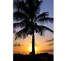 Tropical sunset with red sky, clouds and coconut tree silhouette Photographic Print