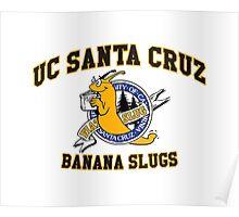 UCSC Banana Slugs Poster