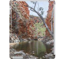 Serpentine Gorge iPad Case/Skin