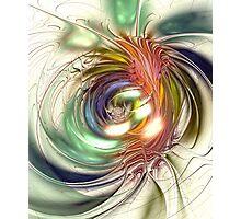 Vivid Vision Photographic Print