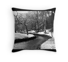 The babbling brook in winter Throw Pillow