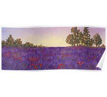 Lavender Evening Poster