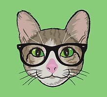 Colorful Hipster Cat by silvianeto