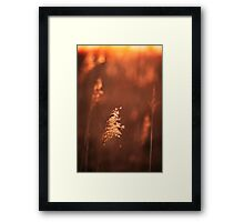 You're Not Alone Framed Print