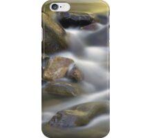 Passing Time At Badger Creek iPhone Case/Skin