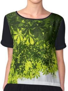 More Than Fifty Shades Of Green - Sunlit Chestnut Leaves Patterns - Down Chiffon Top