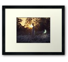 Young Pet Moon Framed Print