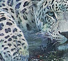 Leopard Abstract Sticker