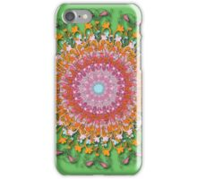 Karmic Wheel iPhone Case/Skin