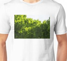More Than Fifty Shades Of Green - Sunlit Chestnut Leaves Patterns - Up Unisex T-Shirt