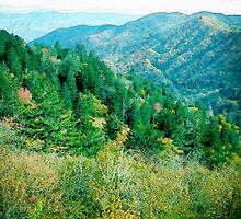 Smokey Mountains by Phil Perkins