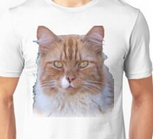 I Come to Visit T-Shirt