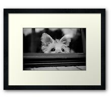 Missing You! Framed Print