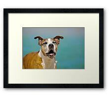Sing like no-one is listening! Framed Print