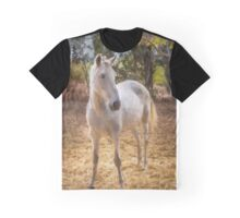 Young horse in the paddock Graphic T-Shirt