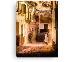 A womans work is never done Canvas Print