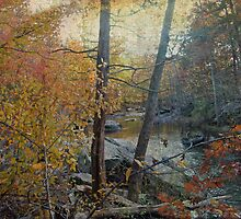 Unami Creek As Autumn Settles In by MotherNature2