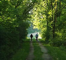 Afternoon Walk by Timothy  Ruf