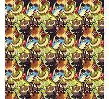 Dragons! Photographic Print