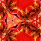 Kaleidoscope Geometry Patterns From Nature 3 by Kenneth Grzesik