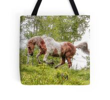 Palomino Paint Horse on the run. Tote Bag