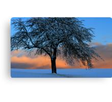 Blue Snow   Black Forest Canvas Print