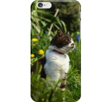 Tabby cat in garden with flowers iPhone Case/Skin