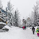 Snowy Day in Whistler by Charles Kosina