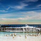 Bath Time - Newcastle NSW Australia by Beth  Wode