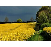 Bright fields and dark clouds Photographic Print