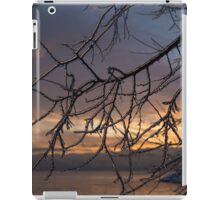 A Sunrise Through the Icy Branches iPad Case/Skin