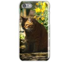 Peeping tom iPhone Case/Skin