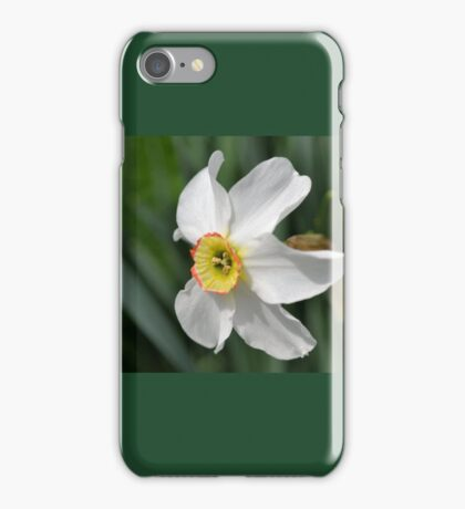 One Tiny Daffodil iPhone Case/Skin