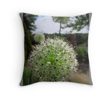 Allium flowers in the walled garden. Throw Pillow