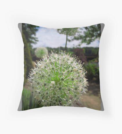 Allium flowers in the walled garden. Throw Pillow