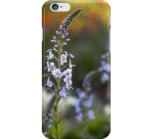 evening garden iPhone Case/Skin