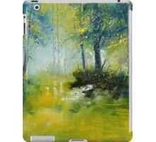pond in the wood iPad Case/Skin