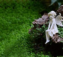 Fairy in the Garden by GrannyMay