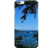 #1319  Patricks Point iPhone Case/Skin