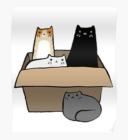 Cats in a Box Poster