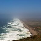 Point Reyes Seashore by mrthink
