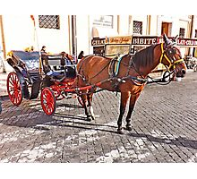 pony and trap-rome Photographic Print