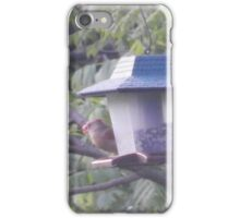 Perfect Bird Collection #10 iPhone Case/Skin