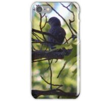 Perfect Bird Collection #12 iPhone Case/Skin