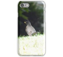 Perfect Bird Collection #13 iPhone Case/Skin