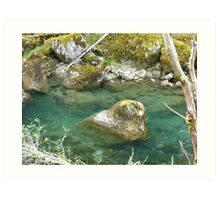 Mountain stream and moss-covered rocks Art Print
